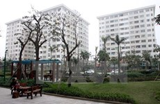 HCM City faces social housing shortage
