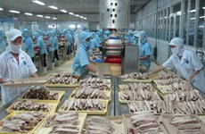 Seafood businesses advised to boost official exports to China
