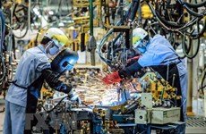 Vietnam's PMI declined to 51.2 in February