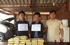 Quang Tri border guards bust trans-national drug trafficking ring