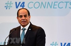 Cooperation with Vietnam to develop further: Egyptian President