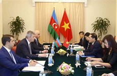 Vietnam, Azerbaijan foreign ministries hold political consultation