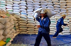 Vietnam seeks sustainable agricultural exports via official channel