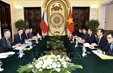 Vietnam, Czech Republic hold political consultation