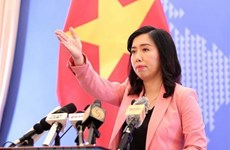 US' annual human rights report not reflective of reality in Vietnam