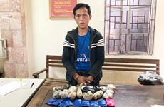 Drug smuggler arrested in northern border province of Son La