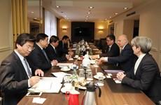 Vietnam-Germany strategic partnership enters new development period: minister