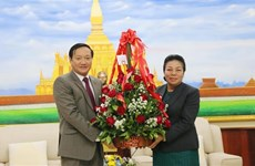 Vietnamese Ambassador congratulates Laos on Party founding anniversary