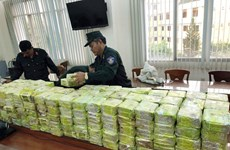 Major drug trafficking ring busted, 300kg of drugs seized