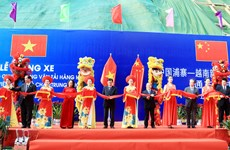 Vietnam, China open specialised route for goods transportation