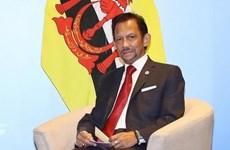 Brunei Sultan's Vietnam visit to enhance all-round cooperation