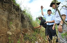 Gia Lai province preserves archaeological sites