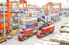 Vietnam's trade turnover reaches 100 billion USD