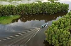 Forum promotes green tourism in Vietnam