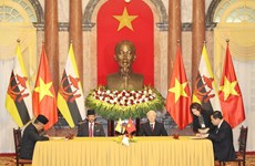 Vietnam, Brunei issue joint statement on comprehensive partnership establishment