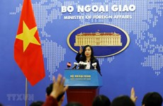 China's recent activities in Hoang Sa violate Vietnam's sovereignty: spokeswoman