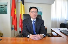 Vietnam prioritises relations with EU: ambassador