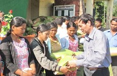More than 400 tonnes of rice supplied for poor people in Yen Bai