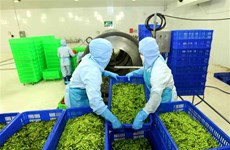 An Giang's export staples enjoy high growth in Q1