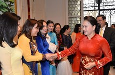 NA leader meets Vietnamese community in Belgium