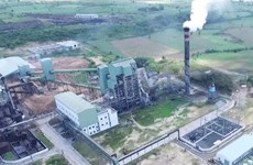 Ministry mulls direct power sale