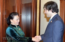 NA Chairwoman: Vietnam wants stronger ties with Georgia