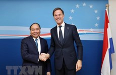 Vietnam, Netherlands expected to set up comprehensive partnership