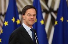 Dutch Prime Minister begins official visit to Vietnam