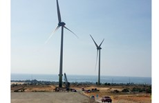 Ninh Thuan: Mui Dinh wind power plant inaugurated