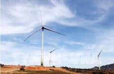 Another wind power project to be built in Quang Tri