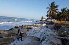 Netherlands supports Vietnam to prevent coastal erosion