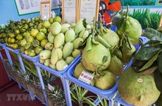 Tien Giang enjoys rising fruit exports