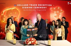 Netherlands boosts cooperation with HCM City