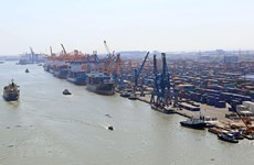 Cargo via Vietnamese seaports hikes in Q1