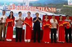 Major wood processing factory opened in Ha Tinh province