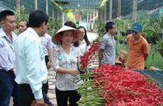Rural districts in HCM City to develop agri-tourism