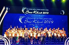 Top 10 Sao Khue awards winners post 112 million USD in revenue