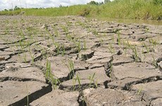 Climate change plan needs to cover vulnerable groups
