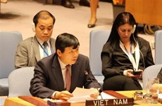 Vietnam vows to join int'l efforts in ending sexual violence in conflict