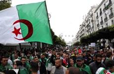 Travel agencies advised to consider tours to Algeria, Sri Lanka