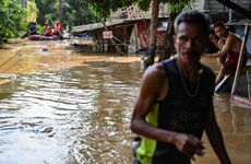 Indonesia: torrential rains force hundreds to evacuate