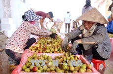 Vietnam, China to enhance trade on farm produce