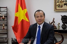 Vietnamese ambassador presents credentials to Marshall President