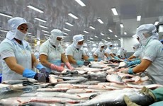 Tra fish industry looks to keep growth momentum