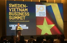 Vietnamese, Swedish firms talk partnership for sustainable growth