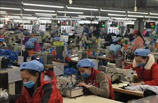 Project seeks to promote green garment-textiles industry