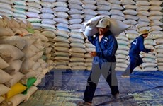Cambodia's rice exports to China rise 45.6 pct in two months