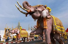 Elephant procession held to honour King of Thailand