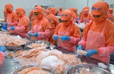 CPTPP – a driver of shrimp export to Canada
