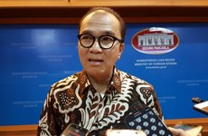Indonesia seeks cooperation opportunities with South Pacific nations